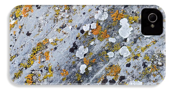 Abstract Orange Lichen 2 IPhone 4 Case by Chase Taylor