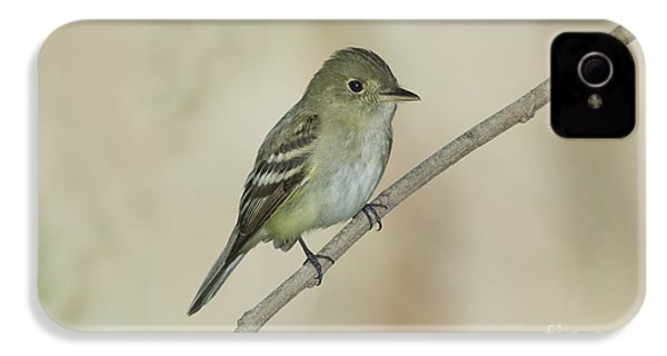 Acadian Flycatcher IPhone 4 Case