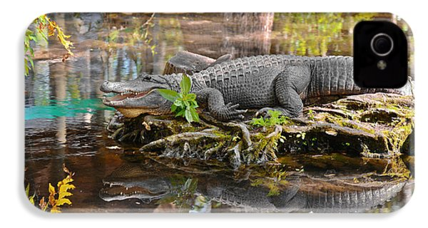 Alligator Mississippiensis IPhone 4 / 4s Case by Christine Till