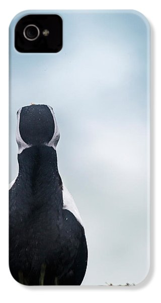 Atlantic Puffin Fratercula Arctica IPhone 4 / 4s Case by Panoramic Images