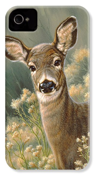 Autumn Fawn-blacktail IPhone 4 Case by Paul Krapf