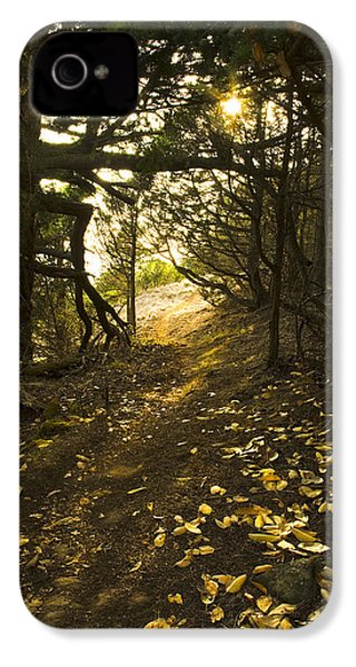 IPhone 4 Case featuring the photograph Autumn Trail In Woods by Yulia Kazansky