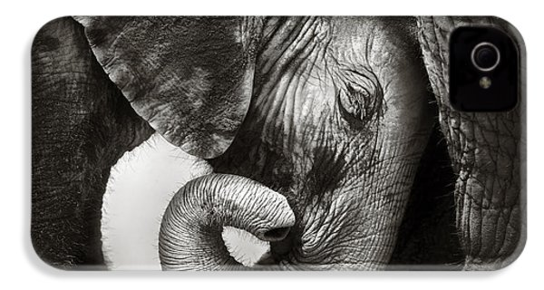 Baby Elephant Seeking Comfort IPhone 4 Case