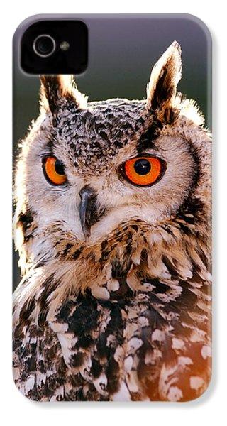Backlit Eagle Owl IPhone 4 Case by Roeselien Raimond