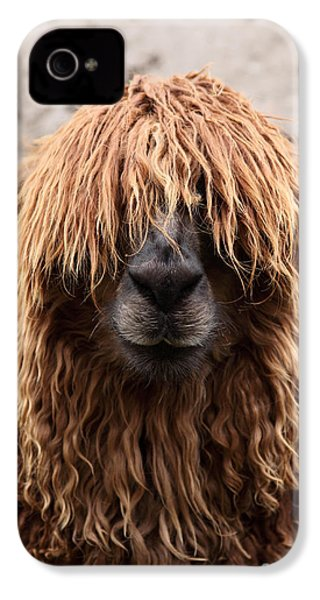 Bad Hair Day IPhone 4 Case by James Brunker