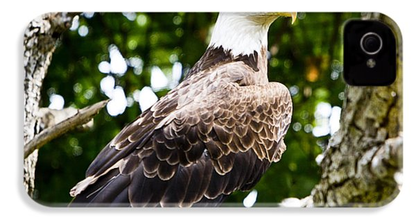 IPhone 4 Case featuring the photograph Bald Eagle by Ricky L Jones