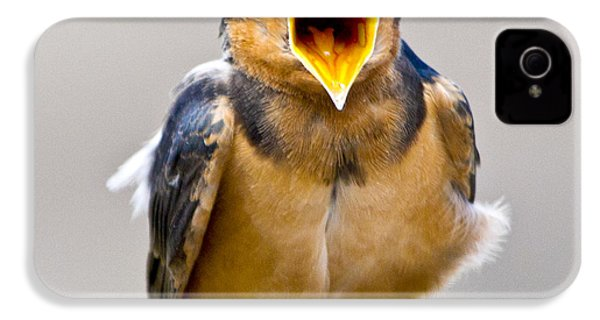 IPhone 4 Case featuring the photograph Barn Swallow by Ricky L Jones