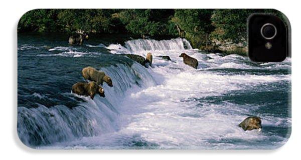 Bears Fish Brooks Fall Katmai Ak IPhone 4 Case