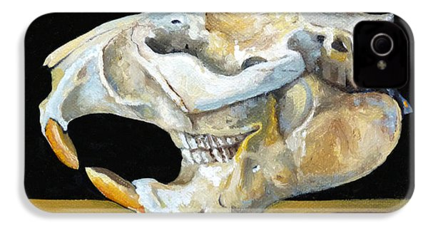 Beaver Skull 1 IPhone 4 / 4s Case by Catherine Twomey