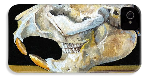 Beaver Skull 1 IPhone 4 Case by Catherine Twomey