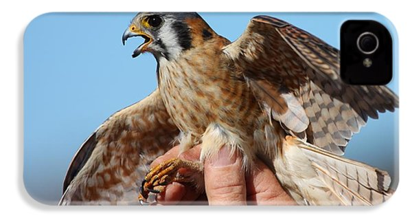 IPhone 4 Case featuring the photograph Behold The American Kestrel by Nathan Rupert