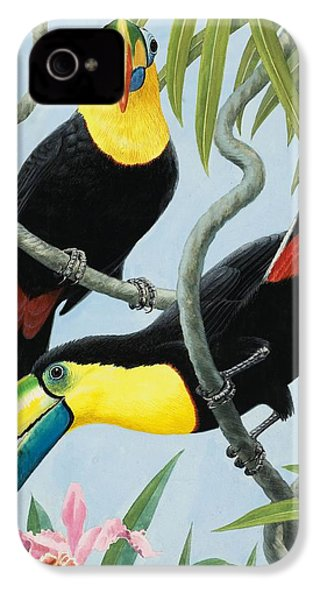Big-beaked Birds IPhone 4 Case by RB Davis