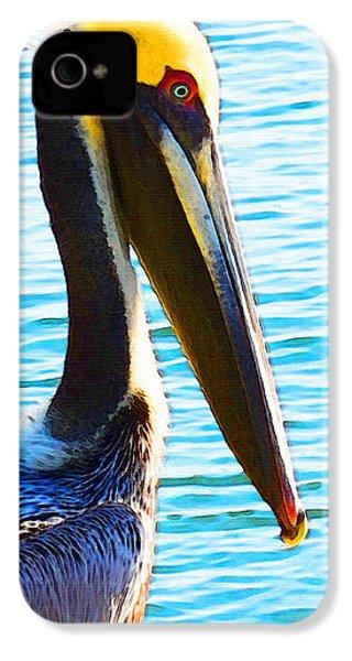 Big Bill - Pelican Art By Sharon Cummings IPhone 4 Case by Sharon Cummings