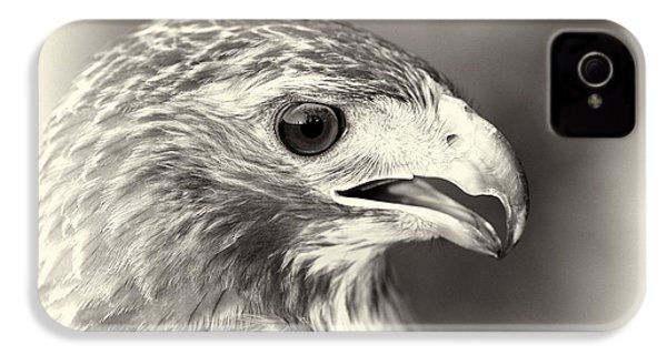 Bird Of Prey IPhone 4 / 4s Case by Dan Sproul
