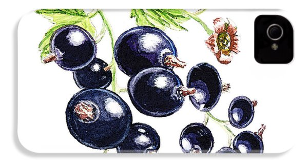 IPhone 4 Case featuring the painting Blackcurrant Berries  by Irina Sztukowski