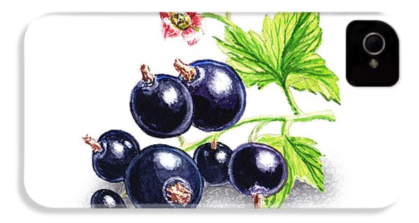 IPhone 4 Case featuring the painting Blackcurrant Still Life by Irina Sztukowski