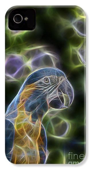 Blue And Gold Macaw  IPhone 4 Case by Douglas Barnard
