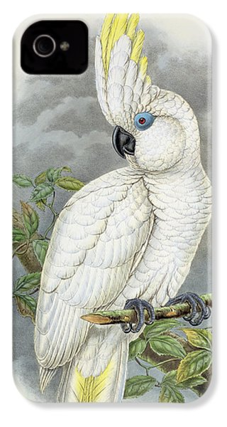 Blue-eyed Cockatoo IPhone 4 Case by William Hart