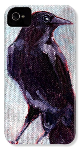 Blue Raven IPhone 4 Case by Nancy Merkle