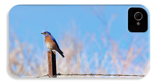 Bluebird On A Post IPhone 4 / 4s Case by Mike  Dawson