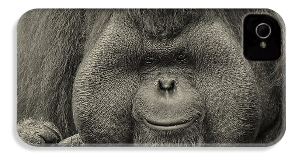 Bornean Orangutan II IPhone 4 / 4s Case by Lourry Legarde