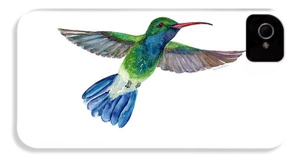 Broadbilled Fan Tail Hummingbird IPhone 4 Case by Amy Kirkpatrick
