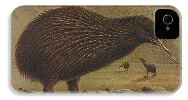 Brown Kiwi IPhone 4 Case by Rob Dreyer