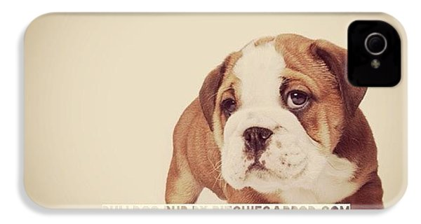 Bulldog Pup IPhone 4 Case
