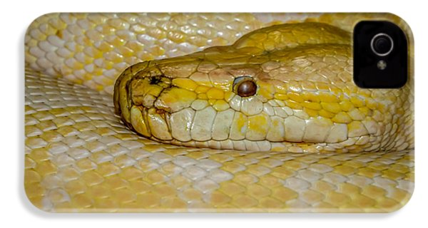 Burmese Python IPhone 4 / 4s Case by Ernie Echols