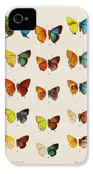 Butterfly Plate IPhone 4 Case by Pati Photography