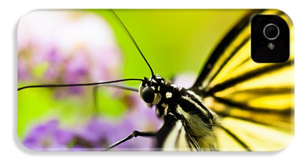 Butterfly IPhone 4 / 4s Case by Sebastian Musial