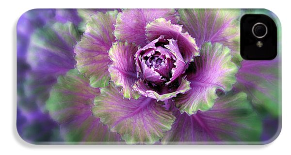 Cabbage Flower IPhone 4 Case