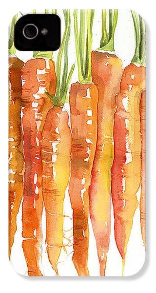 Carrot Bunch Art Blenda Studio IPhone 4 Case by Blenda Studio