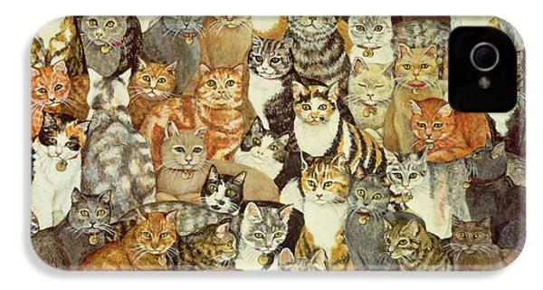 Cat Spread IPhone 4 Case