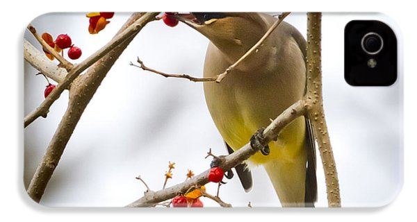 IPhone 4 Case featuring the photograph Cedar Waxwing by Ricky L Jones