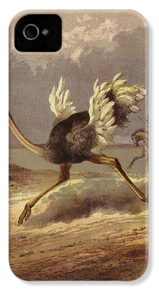 Chasing The Ostrich IPhone 4 Case by English School