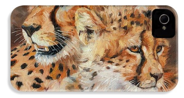 Cheetah And Cub IPhone 4 Case by David Stribbling