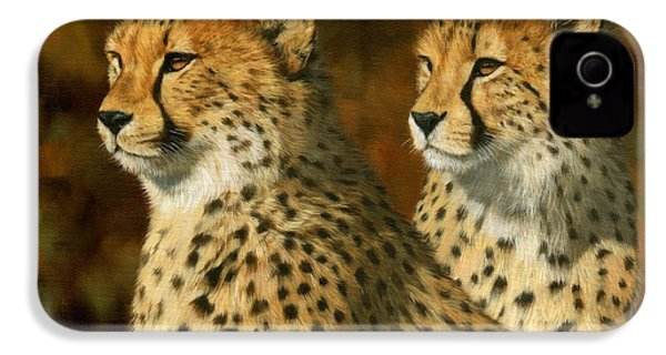 Cheetah Brothers IPhone 4 Case by David Stribbling