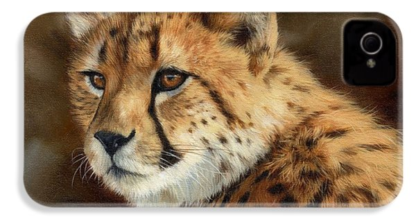 Cheetah IPhone 4 Case by David Stribbling