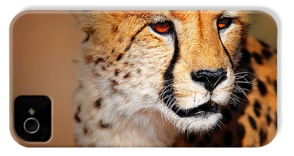 Cheetah Portrait IPhone 4 / 4s Case by Johan Swanepoel