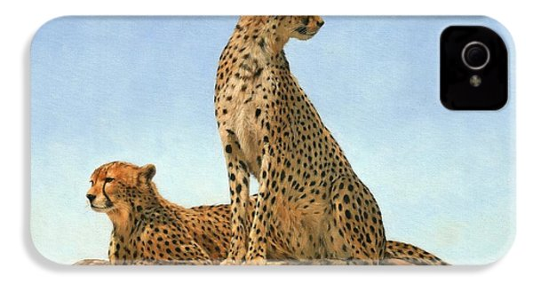 Cheetahs IPhone 4 / 4s Case by David Stribbling