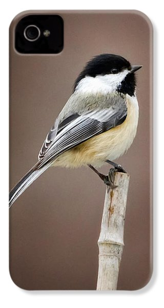 Chickadee IPhone 4 Case by Bill Wakeley