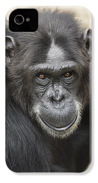 Chimpanzee Portrait Ol Pejeta IPhone 4 / 4s Case by Hiroya Minakuchi