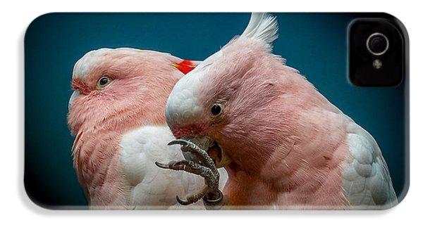 Cockatoos IPhone 4 / 4s Case by Ernie Echols