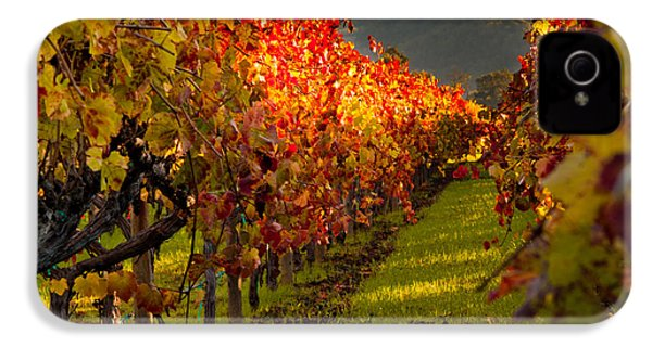 Color On The Vine IPhone 4 Case