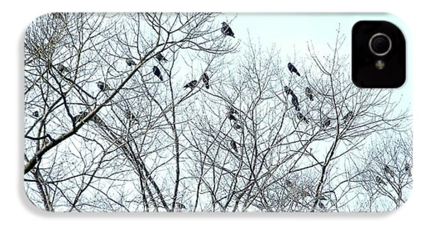 Crow Trees IPhone 4 Case by Marc Philippe Joly