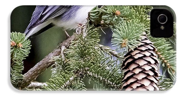 Dark-eyed Junco Speaks Out IPhone 4 Case by Ricky L Jones