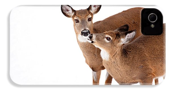 Deer Kisses IPhone 4 Case by Karol Livote