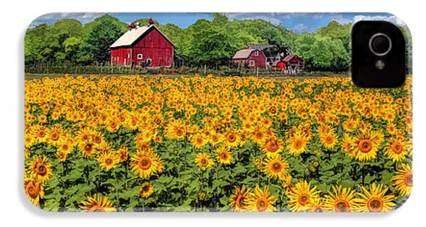 Door County Field Of Sunflowers Panorama IPhone 4 Case by Christopher Arndt
