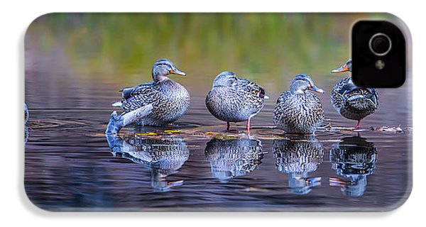 Ducks In A Row IPhone 4 / 4s Case by Larry Marshall
